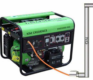 Natural-Gas-Generator-CC5000-NG-B-